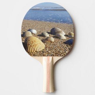 Raquette De Ping Pong Coquilles côtières des Etats-Unis, la Floride, mer