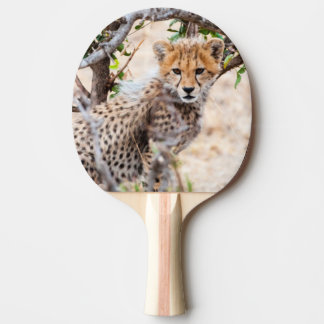 Raquette De Ping Pong Guépard, réservation nationale de Maasai Mara