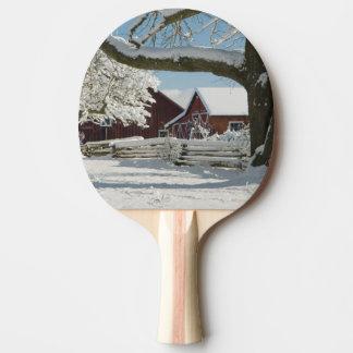 Raquette De Ping Pong L'Amérique du Nord, Etats-Unis, WA, île de