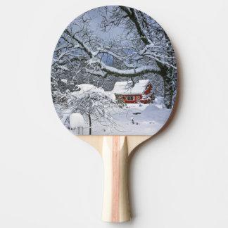Raquette De Ping Pong Les Etats-Unis, Orégon, le comté de Clackamas.