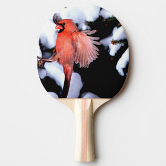 Raquette De Ping Pong Na, Etats-Unis, Minnesota, tailles de Mendota.