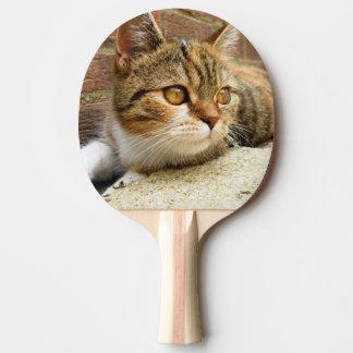 Raquette De Ping Pong Palette de chat