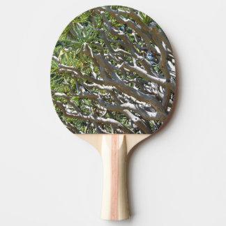 Raquette De Ping Pong Palette de ping-pong d'arbre du sang de dragon