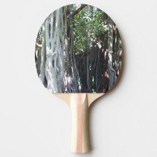 Raquette De Ping Pong Palette de ping-pong de figuier de seigneur Howe