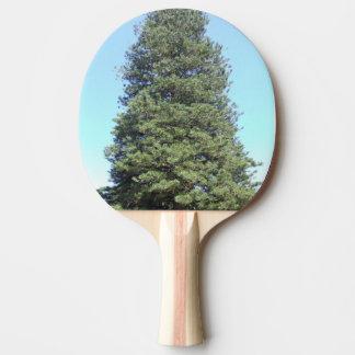 Raquette De Ping Pong Palette de ping-pong de pin de l'Île Norfolk