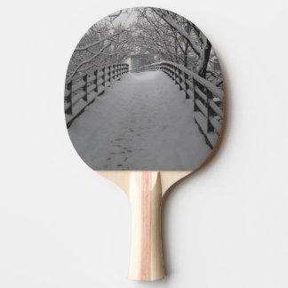 Raquette De Ping Pong Passerelle