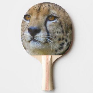 Raquette Tennis De Table cheetah-21.jpg