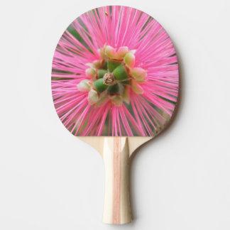 Raquette Tennis De Table Fleur rose d'arbre de gomme