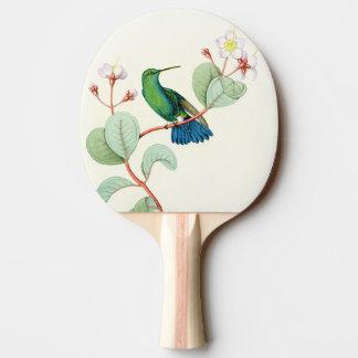Raquette Tennis De Table Fleurs d'animaux de faune d'oiseaux de colibri