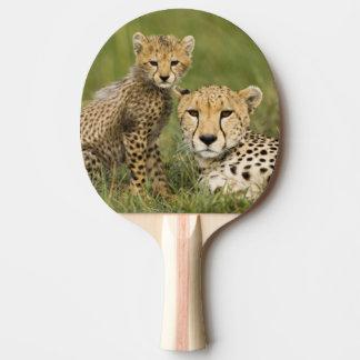 Raquette Tennis De Table Guépard, jubatus d'Acinonyx, avec l'petit animal