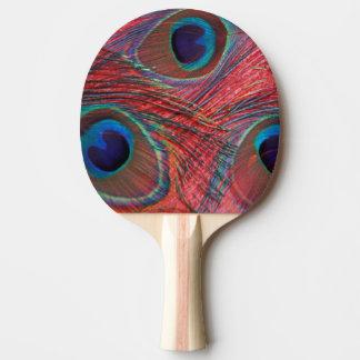 Raquette Tennis De Table L'Amérique du Nord, Etats-Unis, WA, Redmond, paon