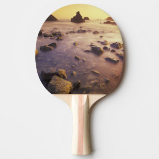 Raquette Tennis De Table Na, Etats-Unis, la Californie, la Californie du