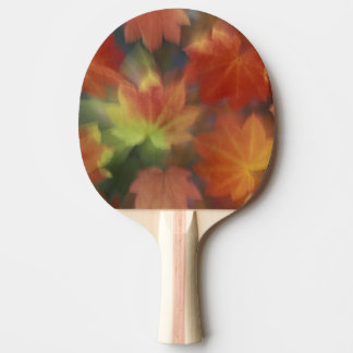 Raquette Tennis De Table Na, Etats-Unis, Washington, Issaquah, érable de
