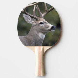 Raquette Tennis De Table Na, l'état de Washington des Etats-Unis, Blanc-a