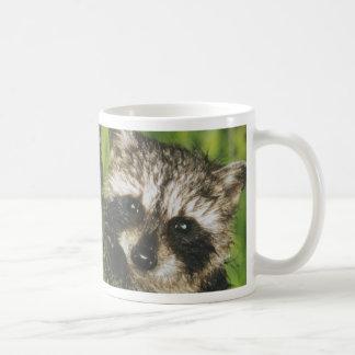 Raton laveur et opossum mug