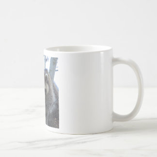 Raton laveur mug blanc