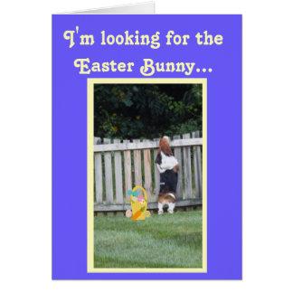Recherche du basset sur la carte de Pâques drôle