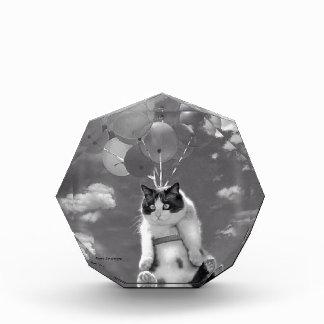 Récompense acrylique : Vol drôle de chat avec des