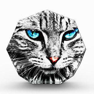 Récompense cat2y