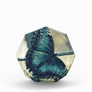 Récompense Papillon bleu