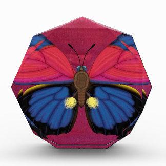 Récompense Papillon de Claudina