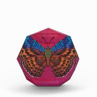Récompense Papillon de forestier de Tentyris