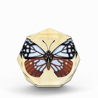 Récompense Papillon de tigre de châtaigne