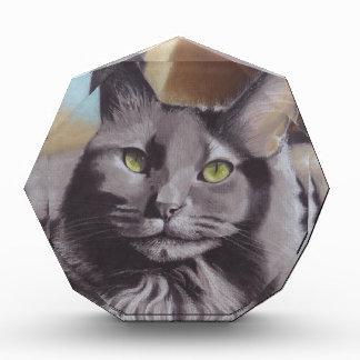 Récompense Portrait gris d'animal familier de chat