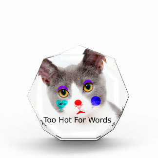 """Récompense """"Trop chaud chat pour mots"""" avec le maquillage de"""