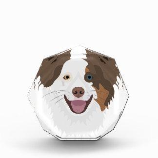 Récompense Visage heureux border collie de chiens