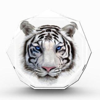 Récompense Yeux du tigre