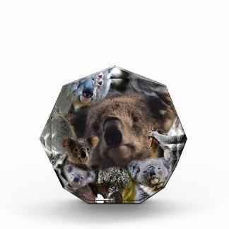 Récompenses En Acrylique Koala heureux