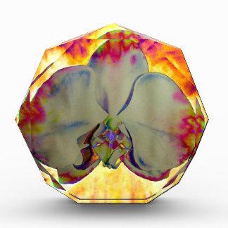 Récompenses En Acrylique Orchidée du feu
