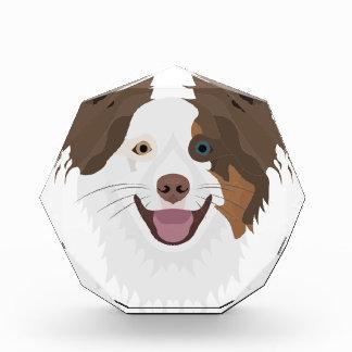 Récompenses En Acrylique Visage heureux border collie de chiens