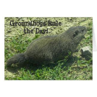 Règle de Groundhogs le jour - carte de jour de