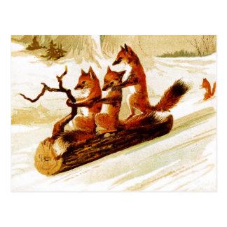Renards Sledding par la neige sur un rondin Carte Postale