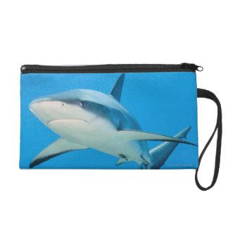Requin des Caraïbes de récif (perezi de Carcharhin Sac À Main Avec Dragonne