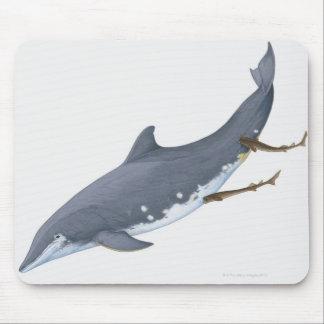 Requins de Cookiecutter Tapis De Souris