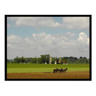 Ressort de ~ dans le ~ 116 du comté de Lancaster Carte Postale