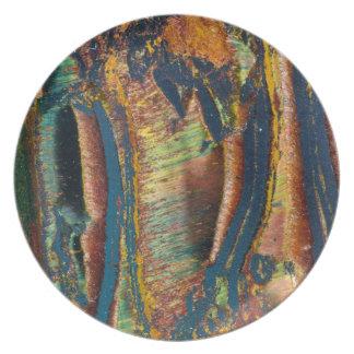 Résumé coloré d'un oeil de tigre assiettes en mélamine