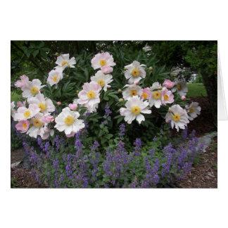Retraite - chronométrez pour sentir les fleurs carte de vœux