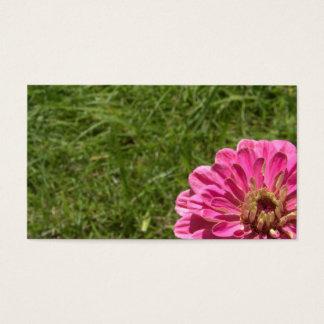 Reuze Roze Zinnia Visitekaartjes