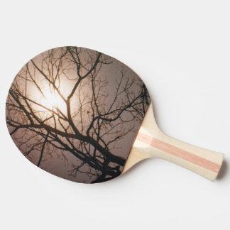 Rêve de clair de lune raquette tennis de table
