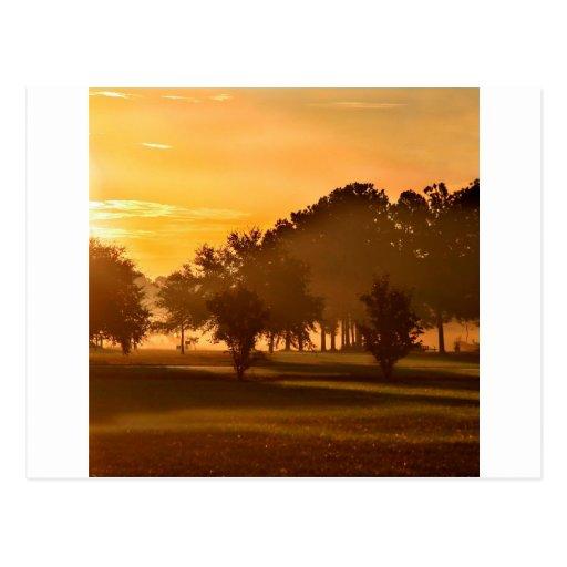 Rêve de golfeurs de coucher du soleil carte postale