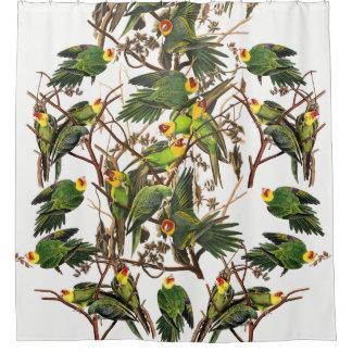 Rideau en douche animal d'oiseau de perroquet