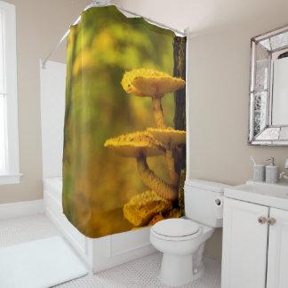 Rideau en douche de beauté de champignon
