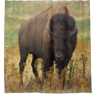 Rideau en douche de bison américain