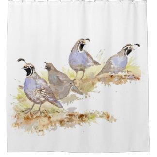 Rideaux De Douche Art de nature d'oiseau de cailles de Californie