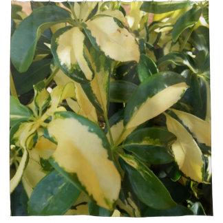 Rideaux De Douche De feuille de Bush image étroite verte et jaune