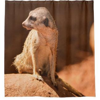 Rideaux De Douche Meerkat